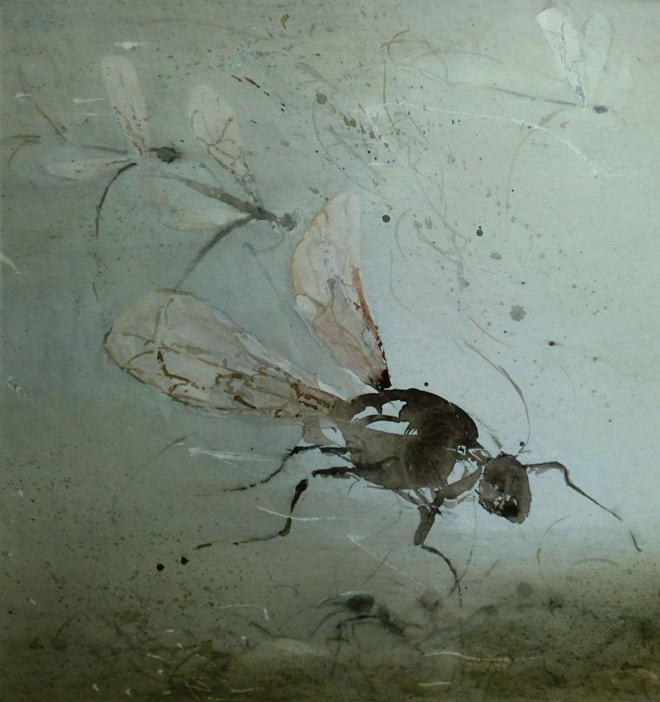 """Insektenwelt"" (2) Aquarell 35x33cm"